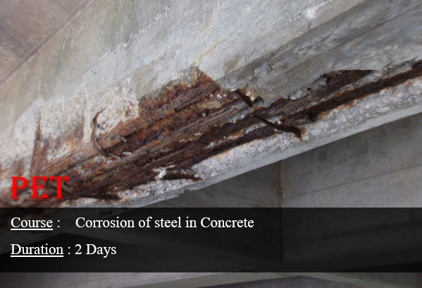 Corrosion of Steel in Concrete (GE17)